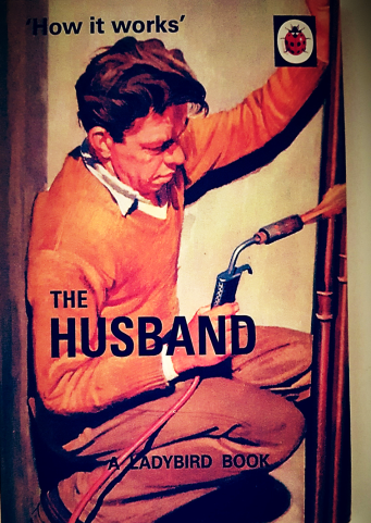 Ladybird for adults books: How it works - The Husband A Ladybird book.